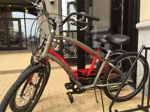 The Bike Line Trek bicycle